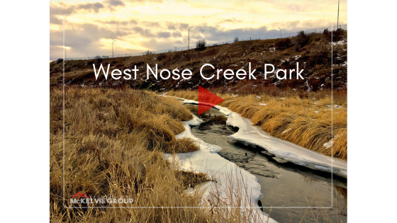 Exploring NE Calgary parks and pathways. Here is a brief tour of West Nose Creek Park a.k.a. Confluence Park